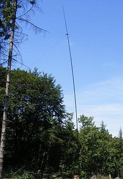 dipole on GFK mast