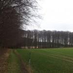MP-1 Antenne am Feld- und Waldesrand.