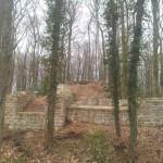 Mauerreste in der Burgruine