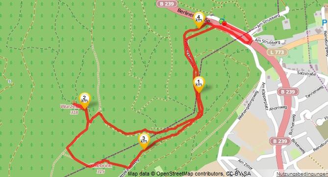 Track auf Open Street Map