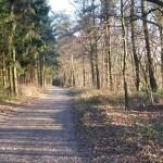 "The ""Hermannsweg"" Hiking Trail"