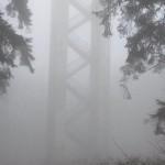 Hermannsturm im Nebel