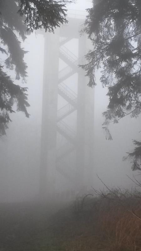 2014 Hermannsturm im Nebel