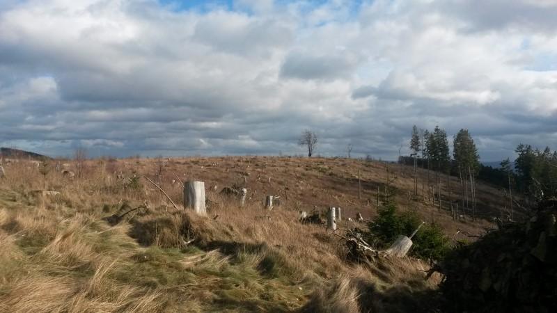 Bizarre Landschaft im Sauerland