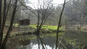 Tolle Schutzhütte in der Eielstädter Schlucht am Bergweiher. Mit Lagerfeuerplatz und Sitzgelegenheiten. Top