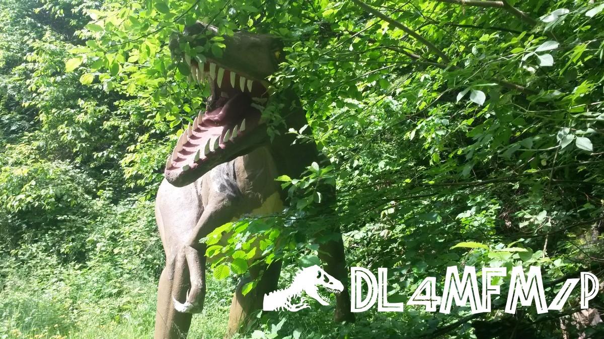 DL4MFM/P