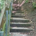 stairs to master a steep slope