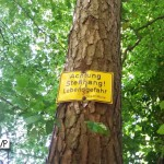 Caution:  Steep Slope