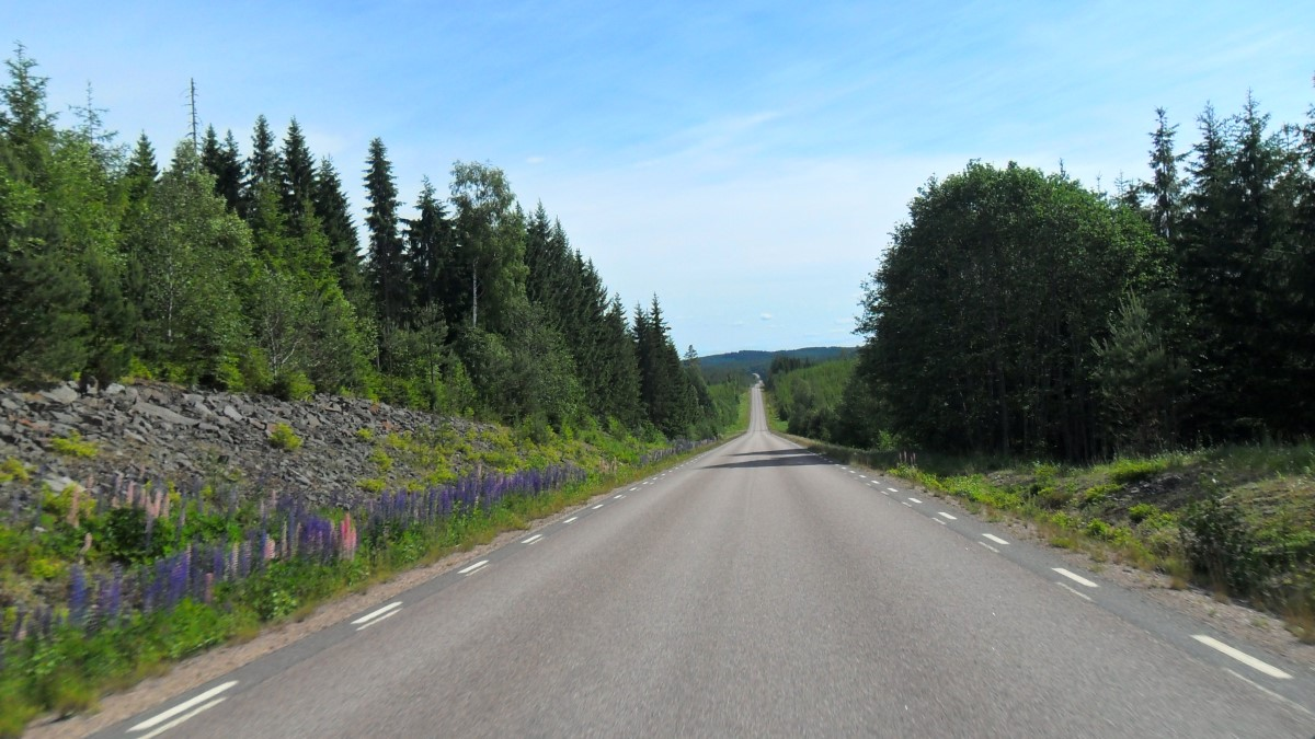 Driving to Hovfjället, SM/VL-004
