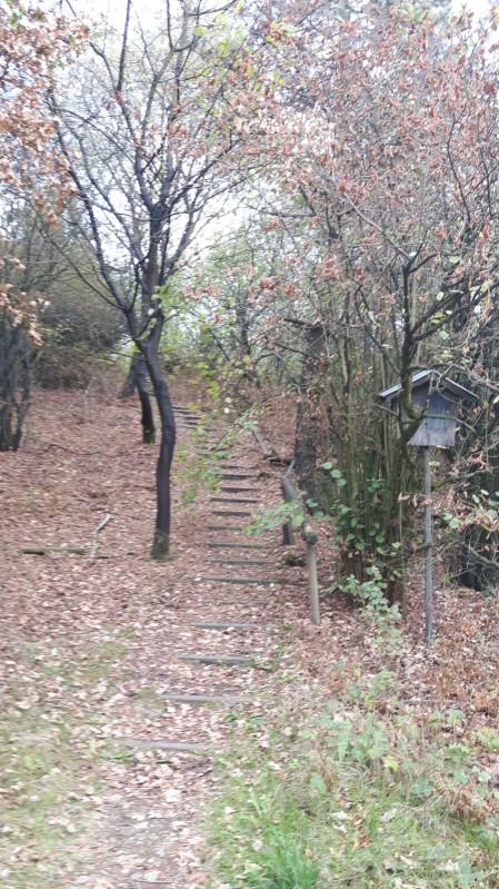 Stufen zum Gipfelpfad